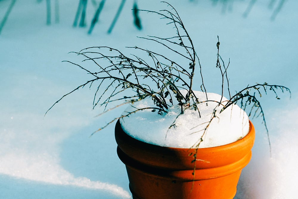 Snow and Ice: Liability for Your Injuries